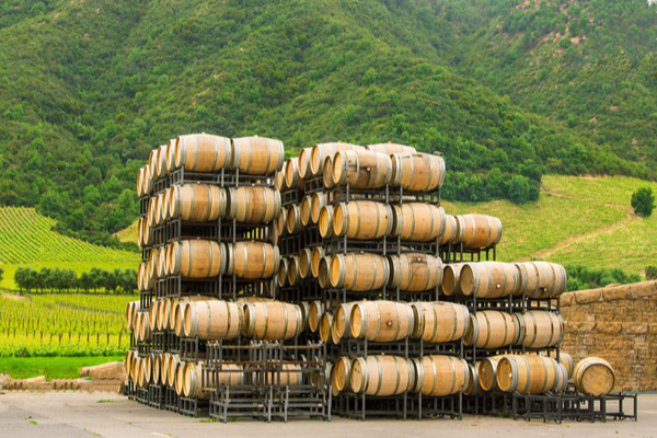 Chile ranks 5th among the wine exporters of the world