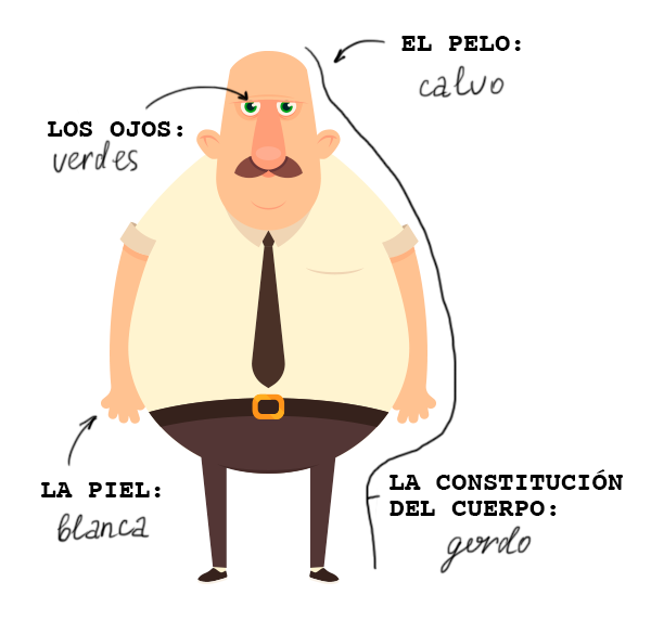 Learn the Spanish for the man's eye color, hair type, hair color, and build