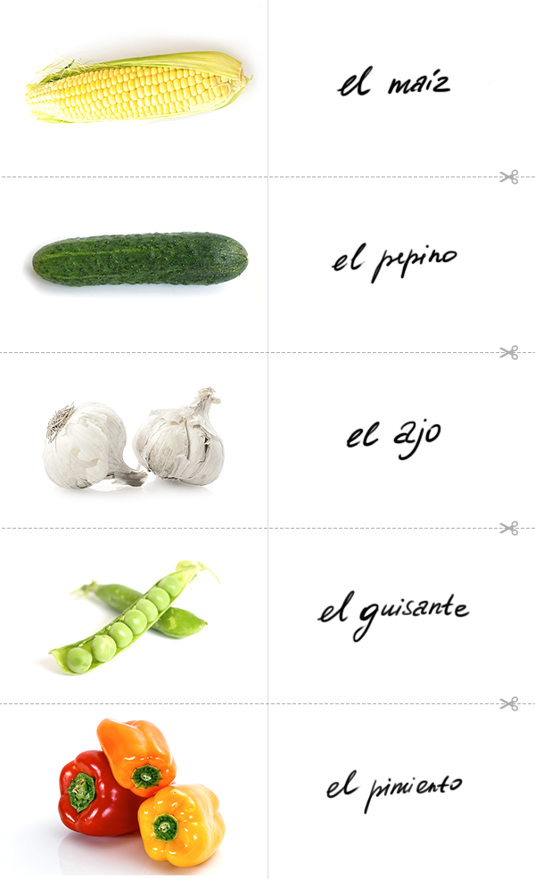 Learn the Spanish for corn, the Spanish for cucumber, the Spanish for garlic, the Spanish for green peas, the Spanish for bell pepper