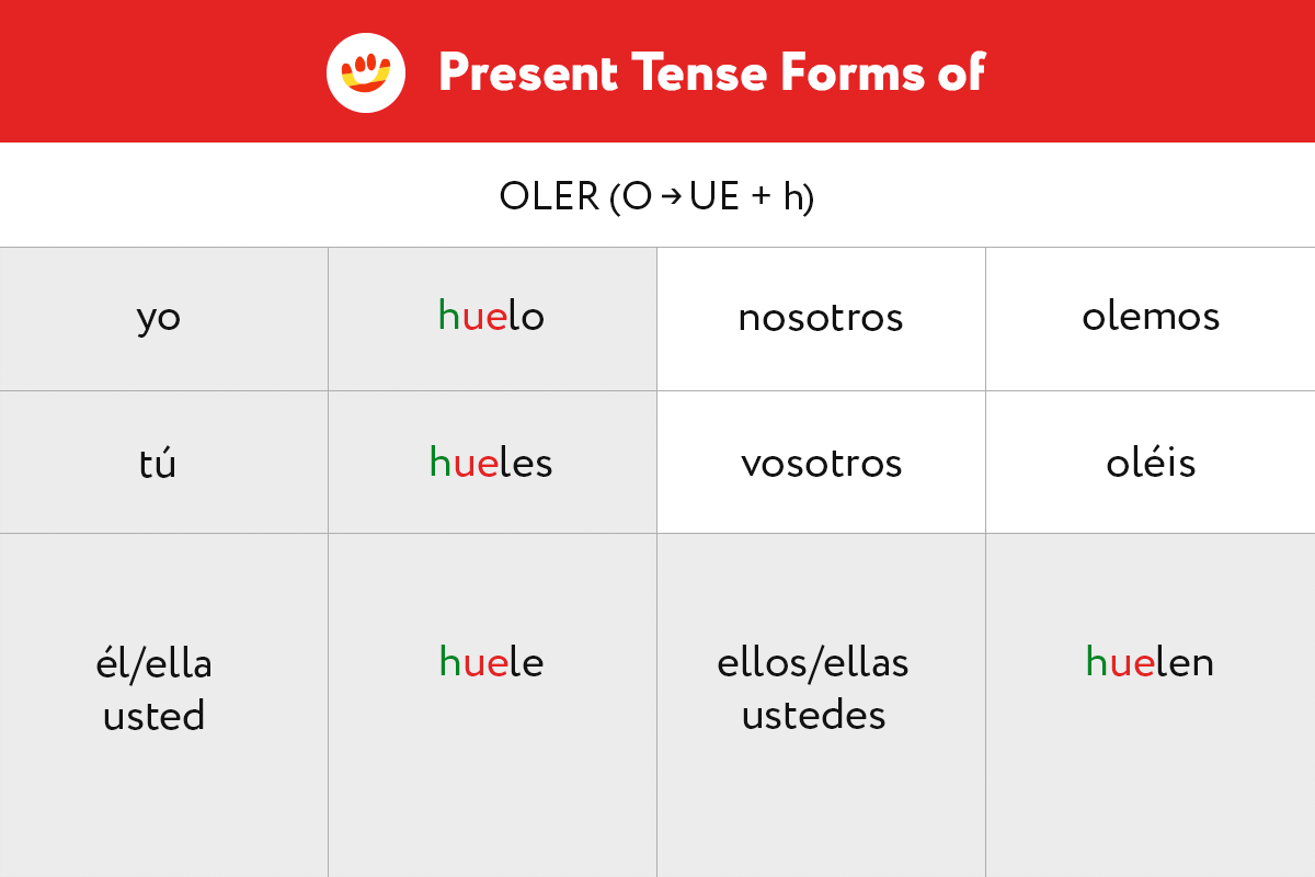 Learn the Present Tense forms of irregular stem-changing verb oler (to smell)